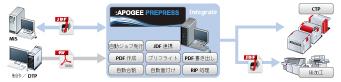 AP_Lineup_INTEGRATE.jpg