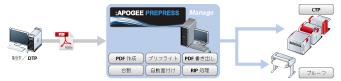 AP_Lineup_MANAGE.jpg