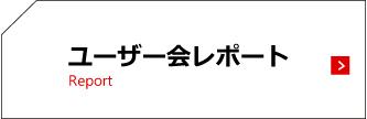 btn_report.jpg
